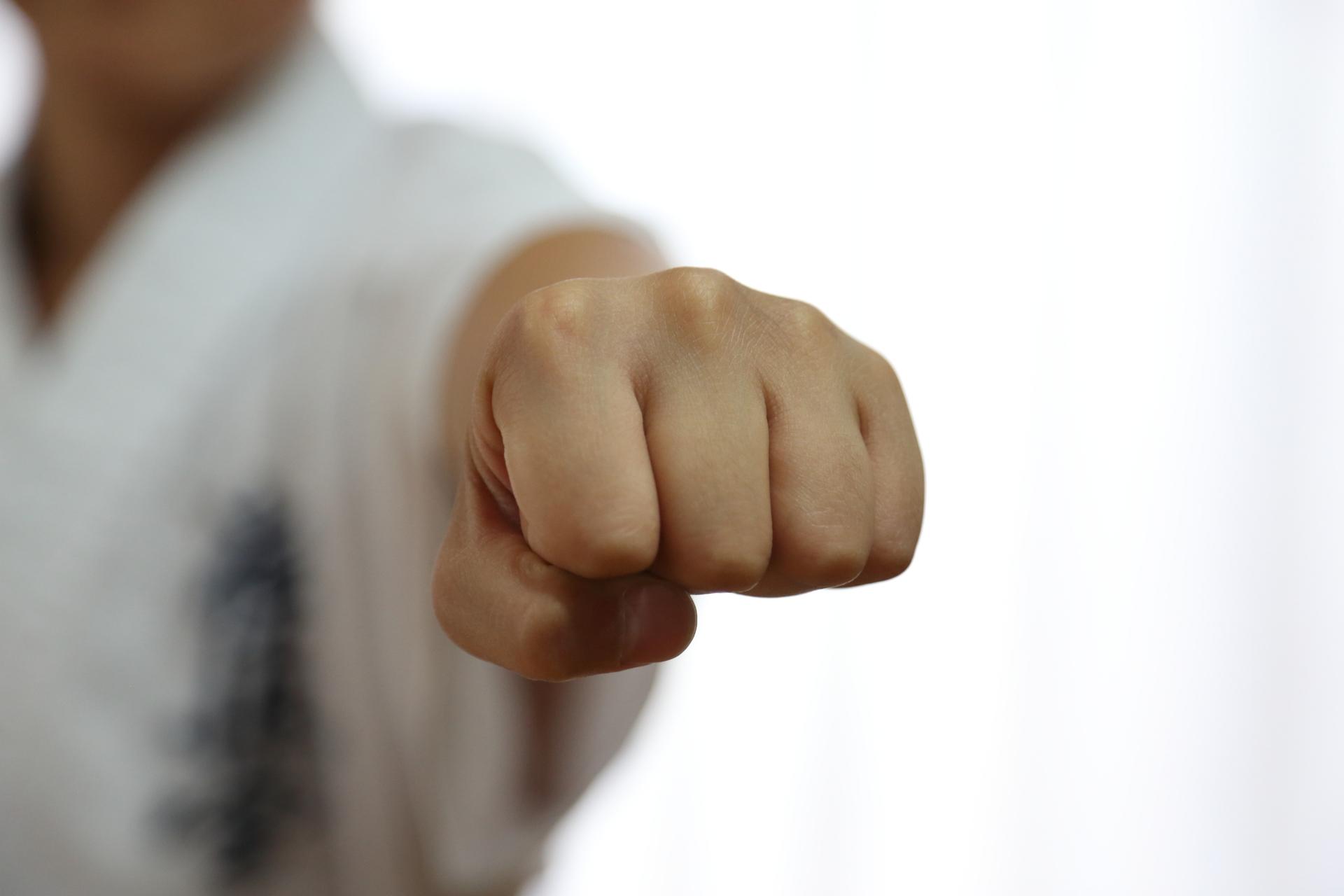 karate_ken